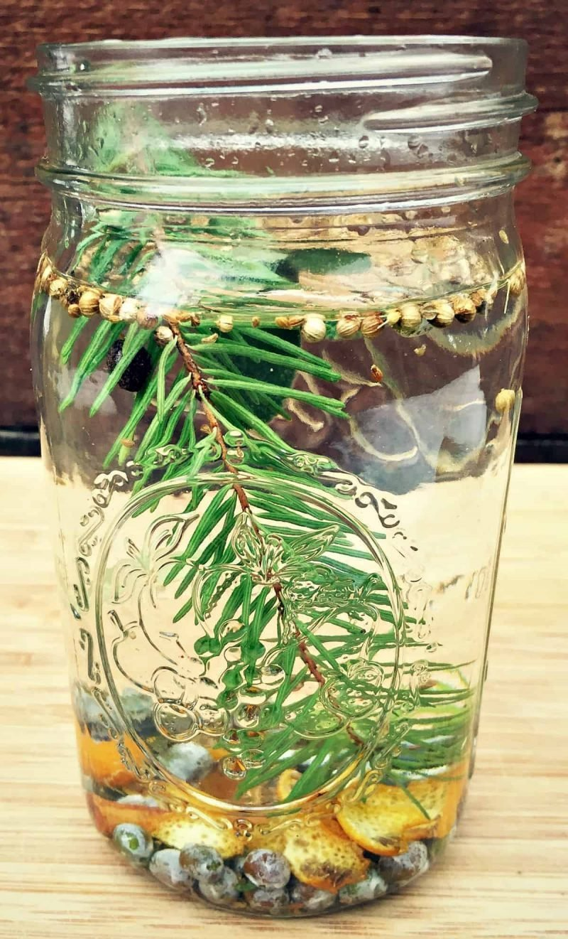 herbs and botanicals in a jar with vodka
