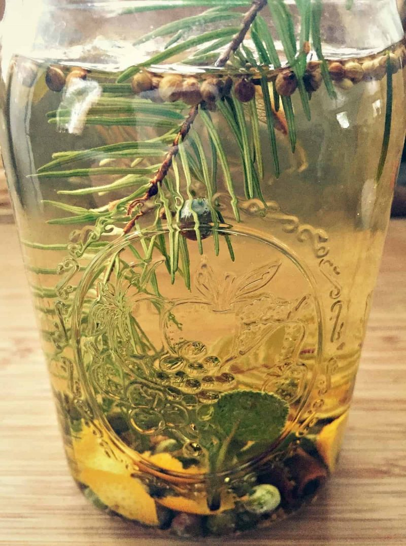 infused winter gin in a jar