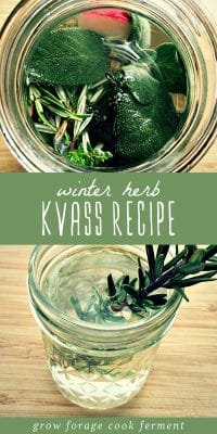 A jar of winter herbs infusing into kvass, and a jar of homemade herb kvass.