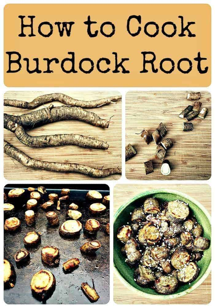How to Cook Burdock Root