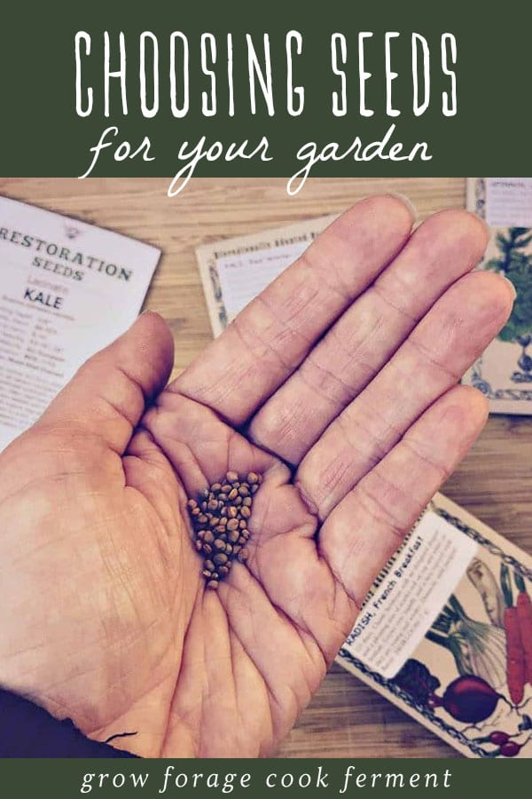 A woman holding garden seeds in her hand.