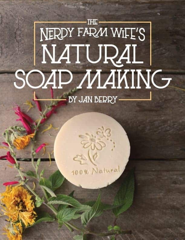 natural soap making ebook