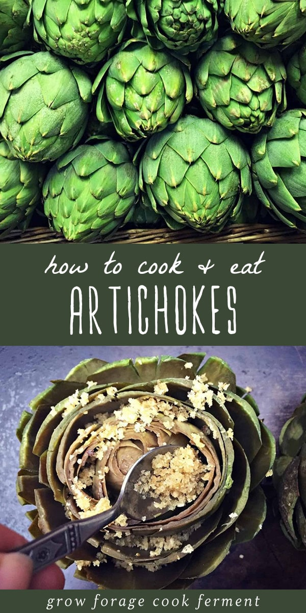 Raw artichokes, and an artichoke cooked with breadcrumbs.