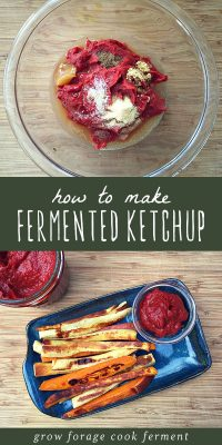 Fermented ketchup ingredients in a bowl, and a plate of fries with a side of fermented ketchup.