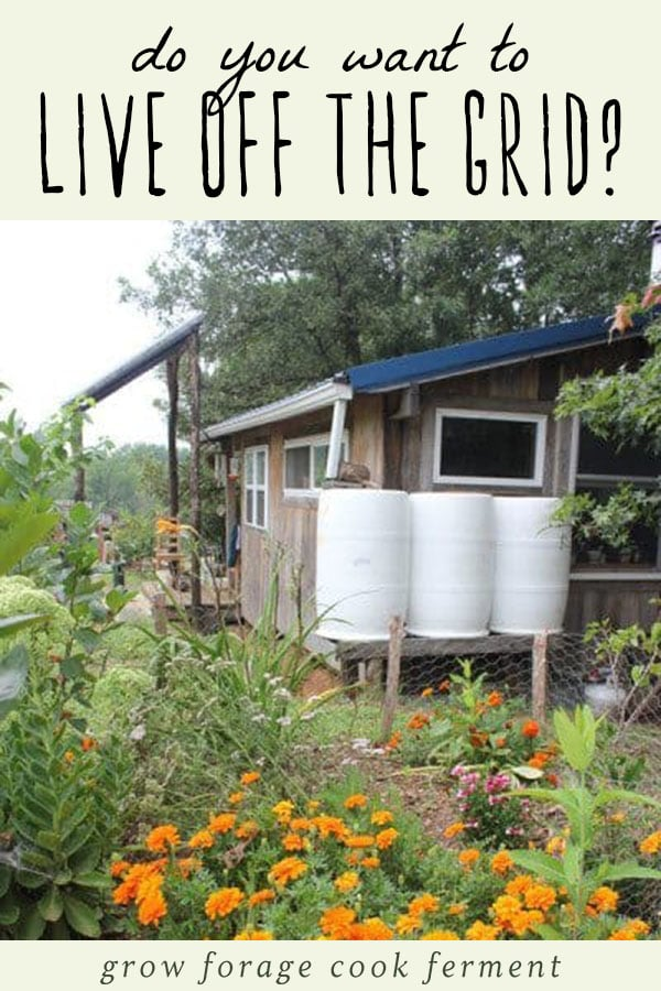 An image of an off grid tiny house with rain water collection barrels outside.