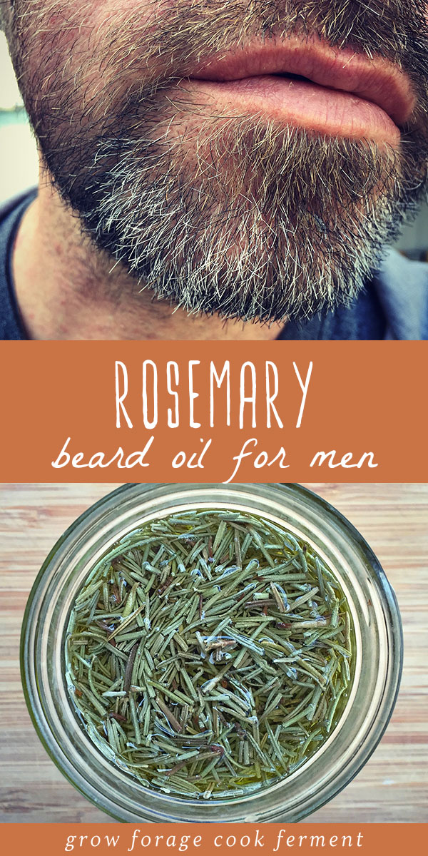 Learn how to make this DIY rosemary beard oil for that bearded man in your life! This is an easy homemade beauty product for men made with just three all natural ingredients - olive oil, rosemary, and tea tree oil, and it smells wonderful! Rosemary has wonderful medicinal benefits for the hair and scalp, so it's the perfect gift for the bearded man in your life.  #beardoil #essentialoils #infused oil #beauty #beard #herbalism #herbalremedy