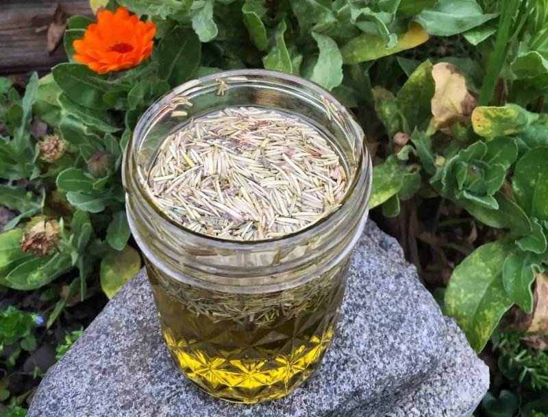 rosemary beard oil
