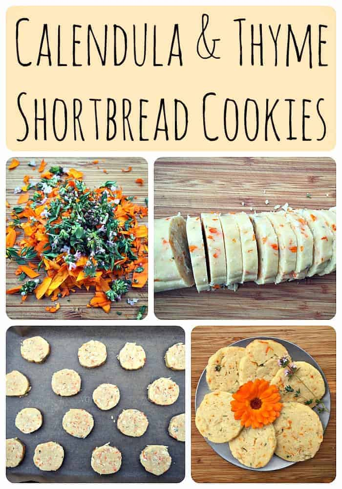 Calendula and Thyme Shortbread Cookies