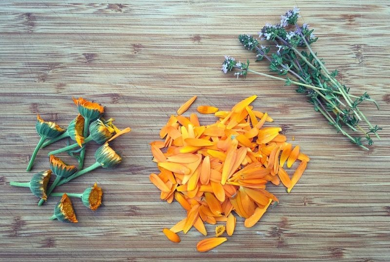 calendula and thyme