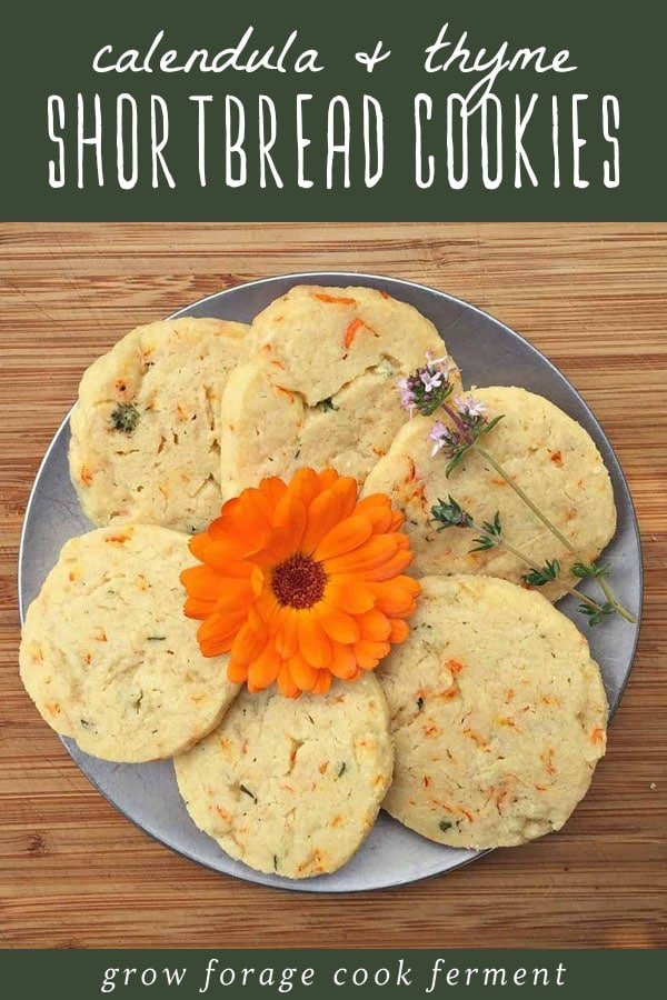 A plate of calendula and thyme shortbread cookies.