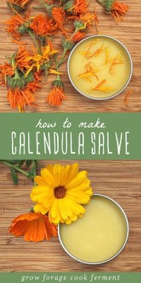 A tin of calendula salve surrounded by calendula flowers on a cutting board.