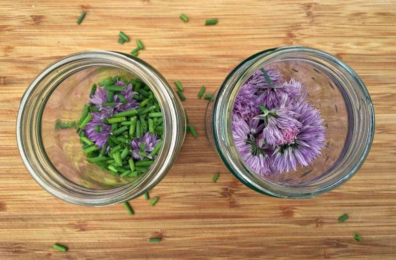 chives in jars