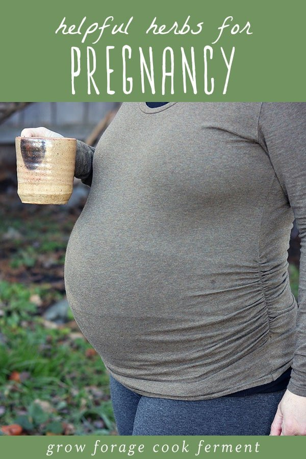 A pregnant woman holding a mug of herbal tea.