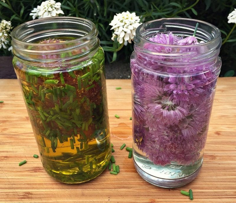start chive oil and vinegar