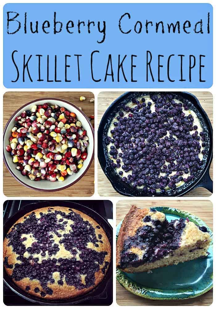 Blueberry Cornmeal Skillet Cake Recipe