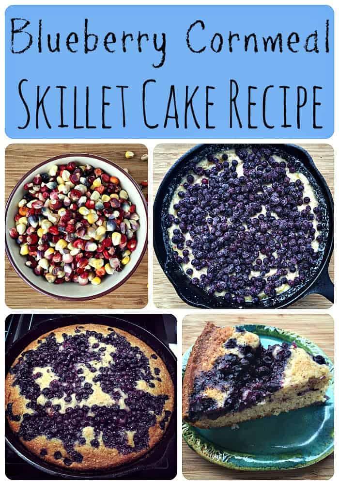 Blueberry Cornmeal Skillet Cake Recipe