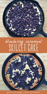 Blueberry cornmeal cake in a cast iron skillet, baked and unbaked.