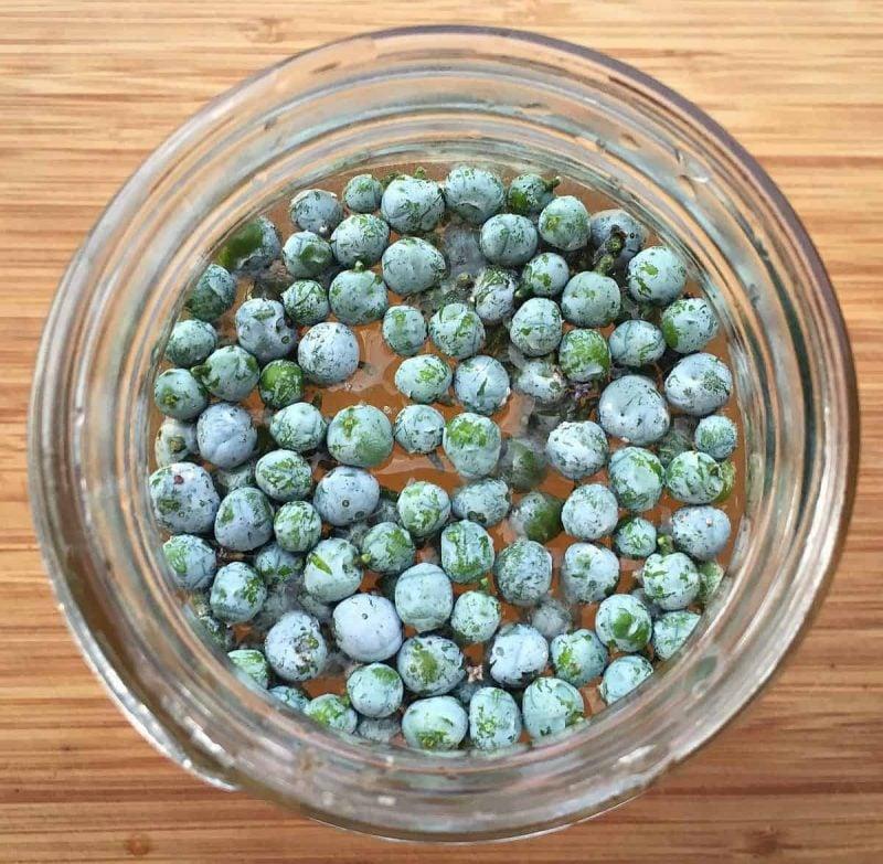 juniper berries and sugar solution in a jar