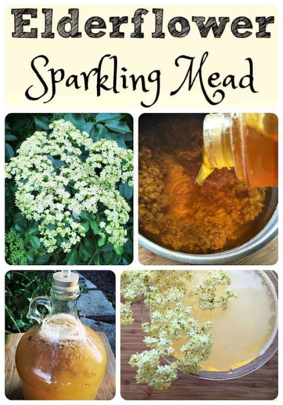 Elderflower Sparkling Mead