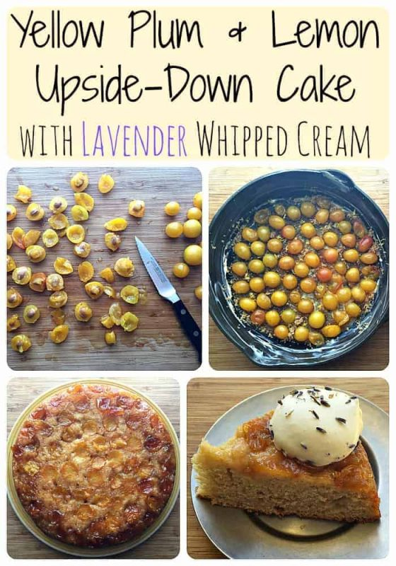 Yellow Plum & Lemon Upside-Down Cake with Lavender Whipped Cream