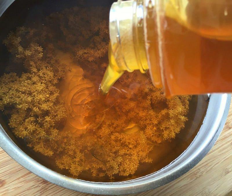 adding honey to the elderflower tea