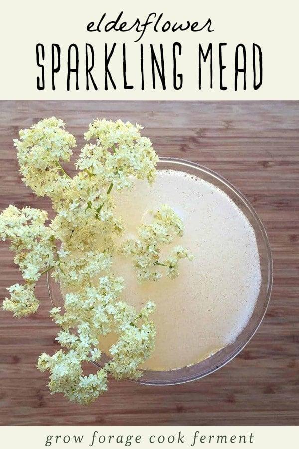 A glass of elderflower sparkling mead.