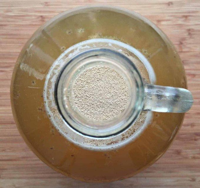 elderflower yeast