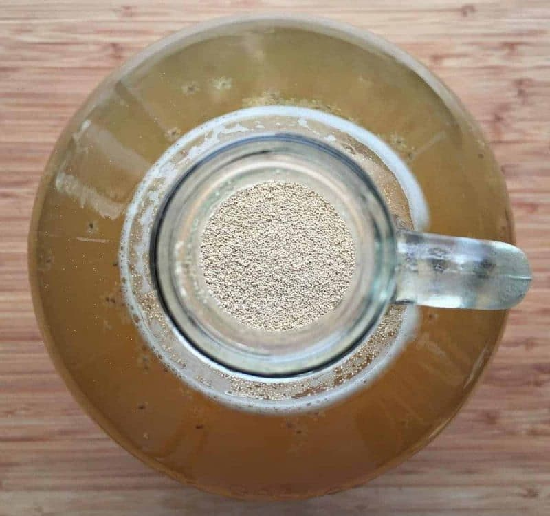 pitch yeast in the mead jug