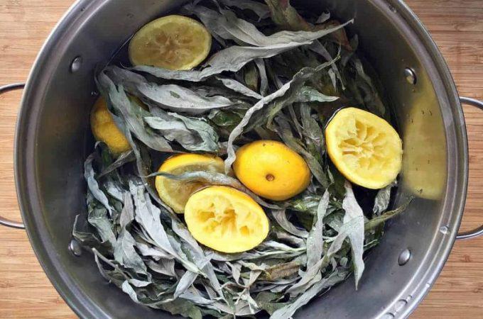 Mugwort Lemon Beer Recipe
