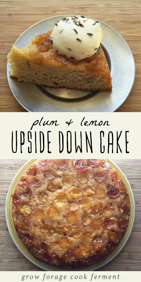 This plum and lemon upside down cake is the perfect easy dessert recipe for summertime entertaining. It's baked in a cast iron skillet, then topped with lavender whipped cream. Delicious! #cake #castironcooking