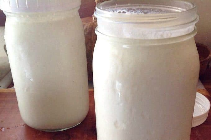 How to Make Yogurt in a Dehydrator