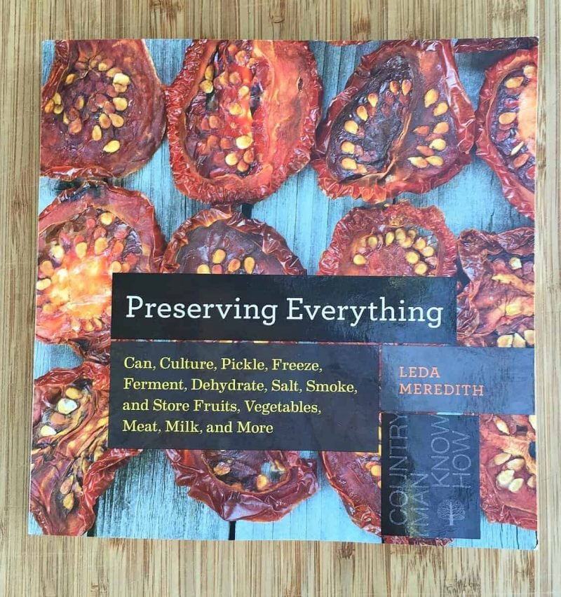 preserving everything book by leda meredith