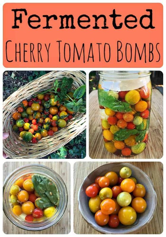 how-to-make-fermented-cherry-tomato-bombs