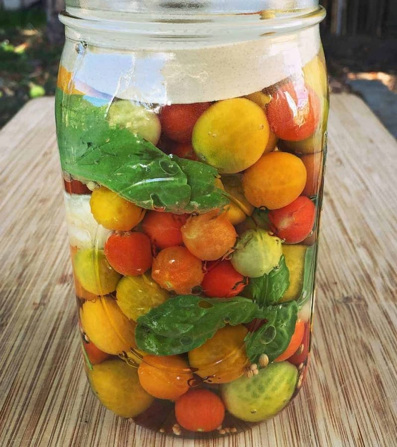 cherry tomatoes fermenting in a jar with a weight