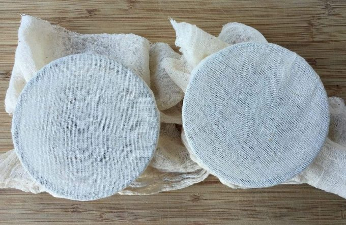 cover-tomato-seeds-with-cheesecloth