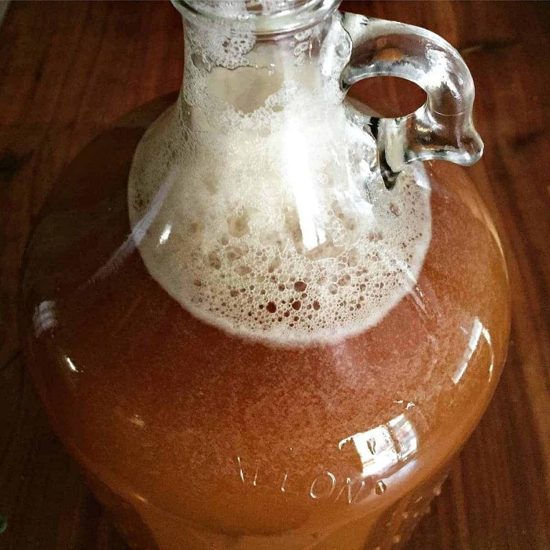 wild hard apple cider in a one gallon jug