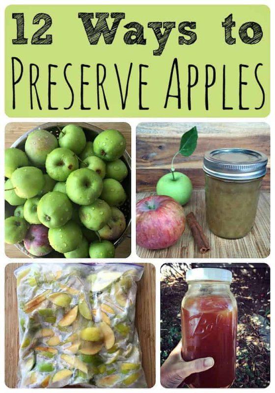12-ways-to-preserve-apples