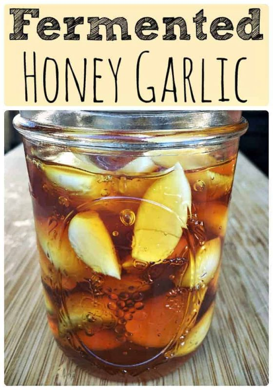 fermented-honey-garlic