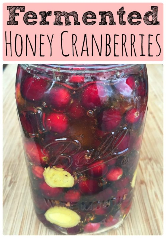 fermented-honey-cranberries