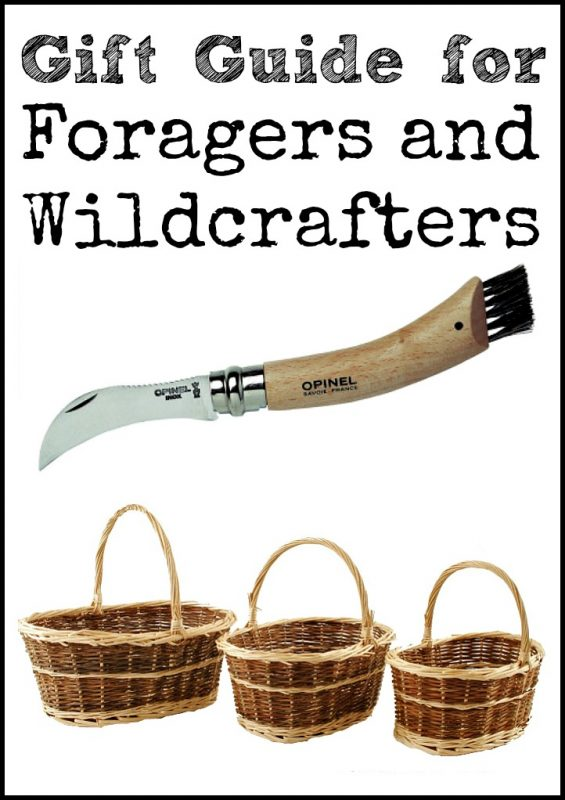 If you have friends who like to identify and collect wild plants and mushrooms, here is cool gift guide for foragers and wildcrafters!