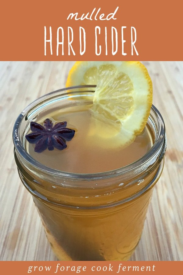 A glass of mulled hard cider garnished with a lemon and star anise.