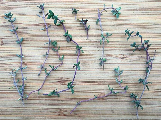 thyme-sprigs