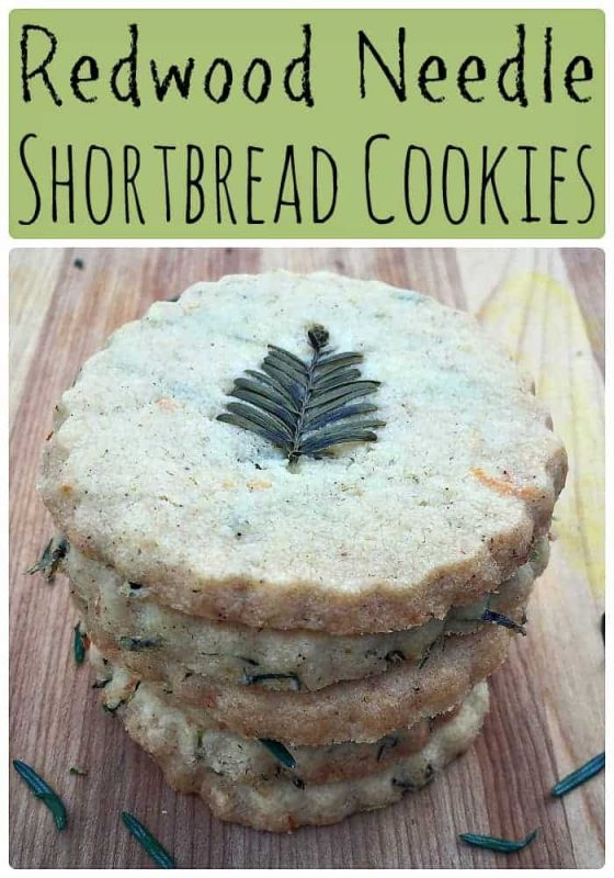 redwood-needle-shortbread-cookies