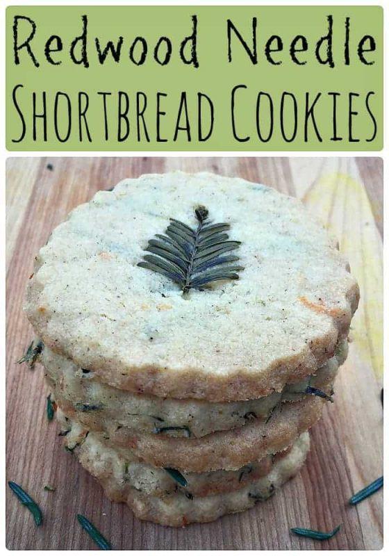 redwood-needle-shortbread-cookies