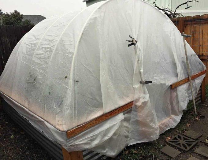 backyard-hoophouse