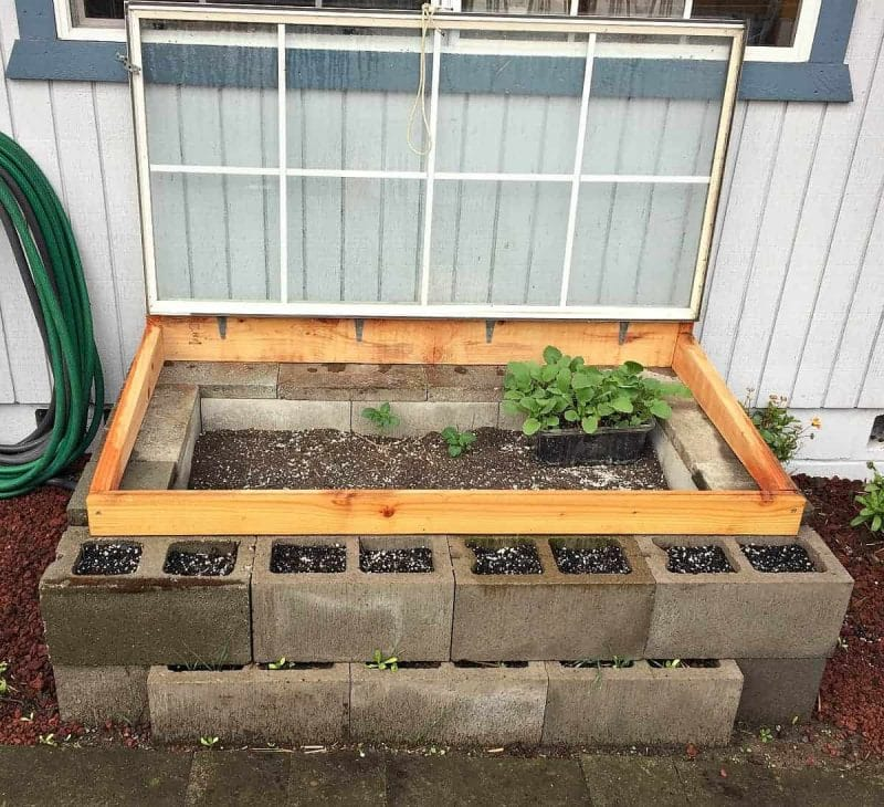 cold-frame-open