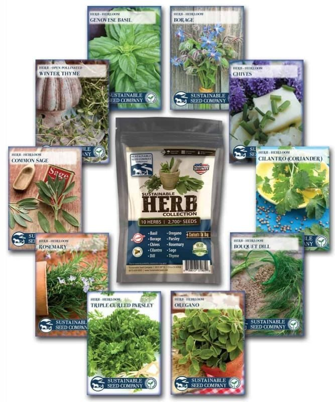 herb-seed-collection