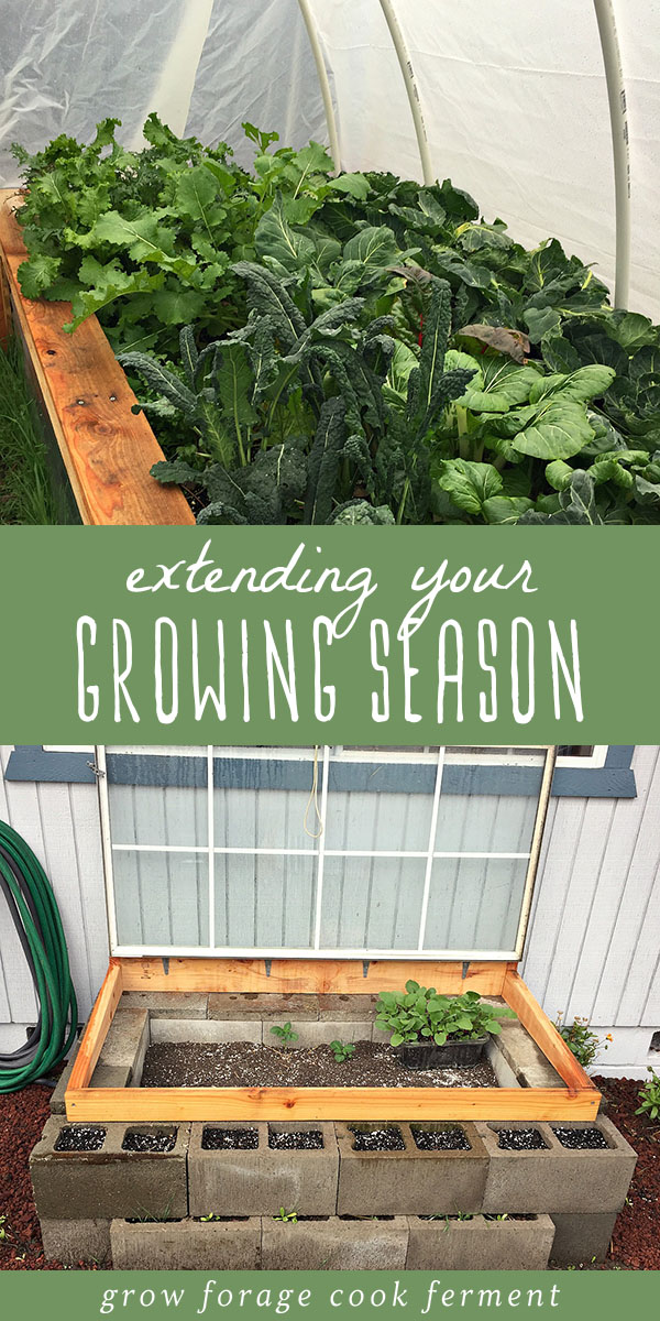 Here are some great simple methods to extend your growing season in your small scale, backyard permaculture garden. Grow your own food longer! Get your garden started a little earlier in the spring, or extend the growing season in the fall, to get the most out of your backyard garden! #garden #growing #permaculture #homestead #homesteading