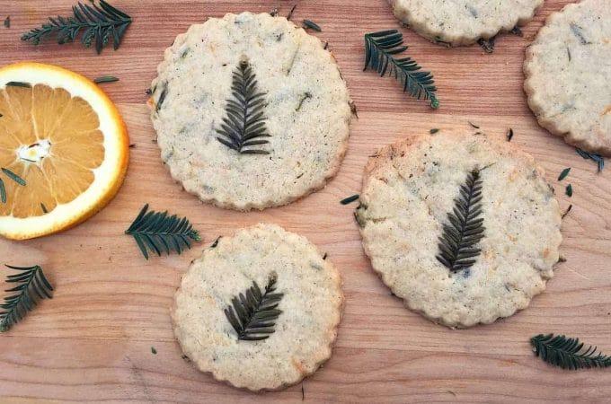 Redwood Needle Shortbread Cookies