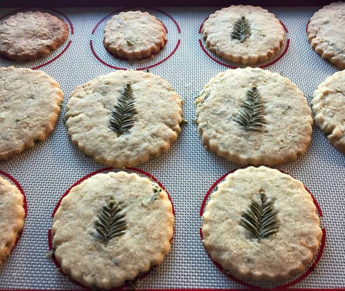redwood-shortbread-cookies-out-of-the-oven